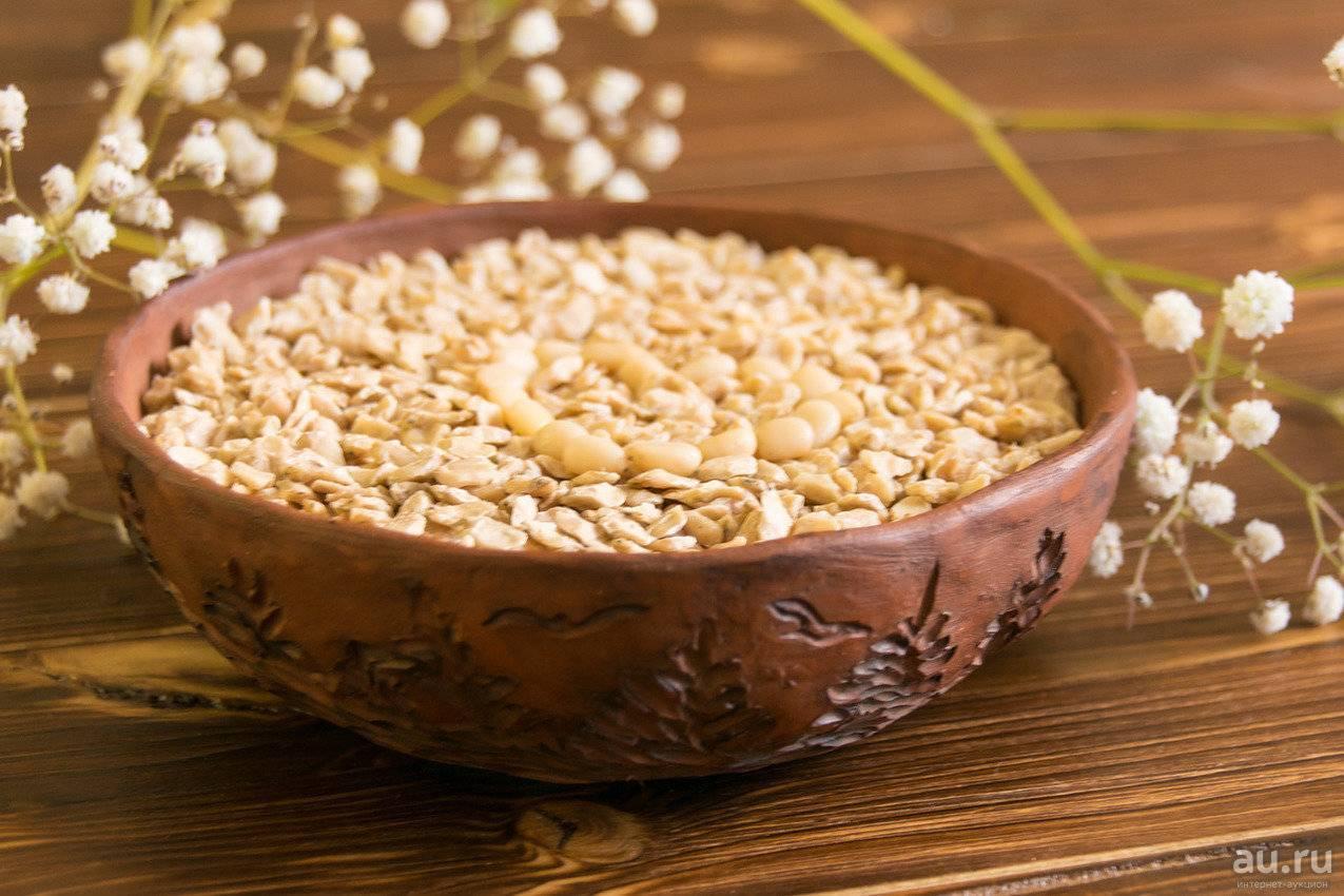 Кедровые орехи – полезные свойства и противопоказания, о которых вы не знали. - советы народной мудрости - медиаплатформа миртесен