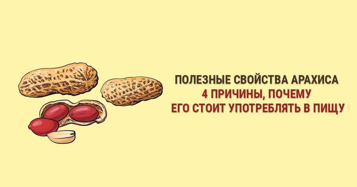 Вред и польза арахиса: состав и калорийность ореха, его влияние на организм женщин и мужчин