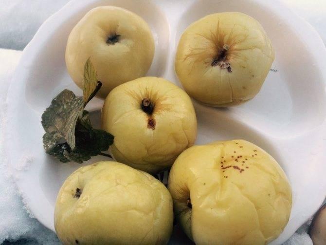 Особенности того, как приготовить мочёные яблоки в домашних условиях, рецепты из яблок антоновка