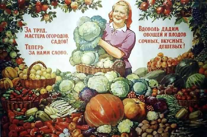Как наши предки выращивали хлеб - емельянова э. - страница 2