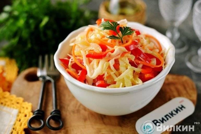 Маринованная капуста с морковью быстрого приготовления – 7 рецептов с пошаговыми фото