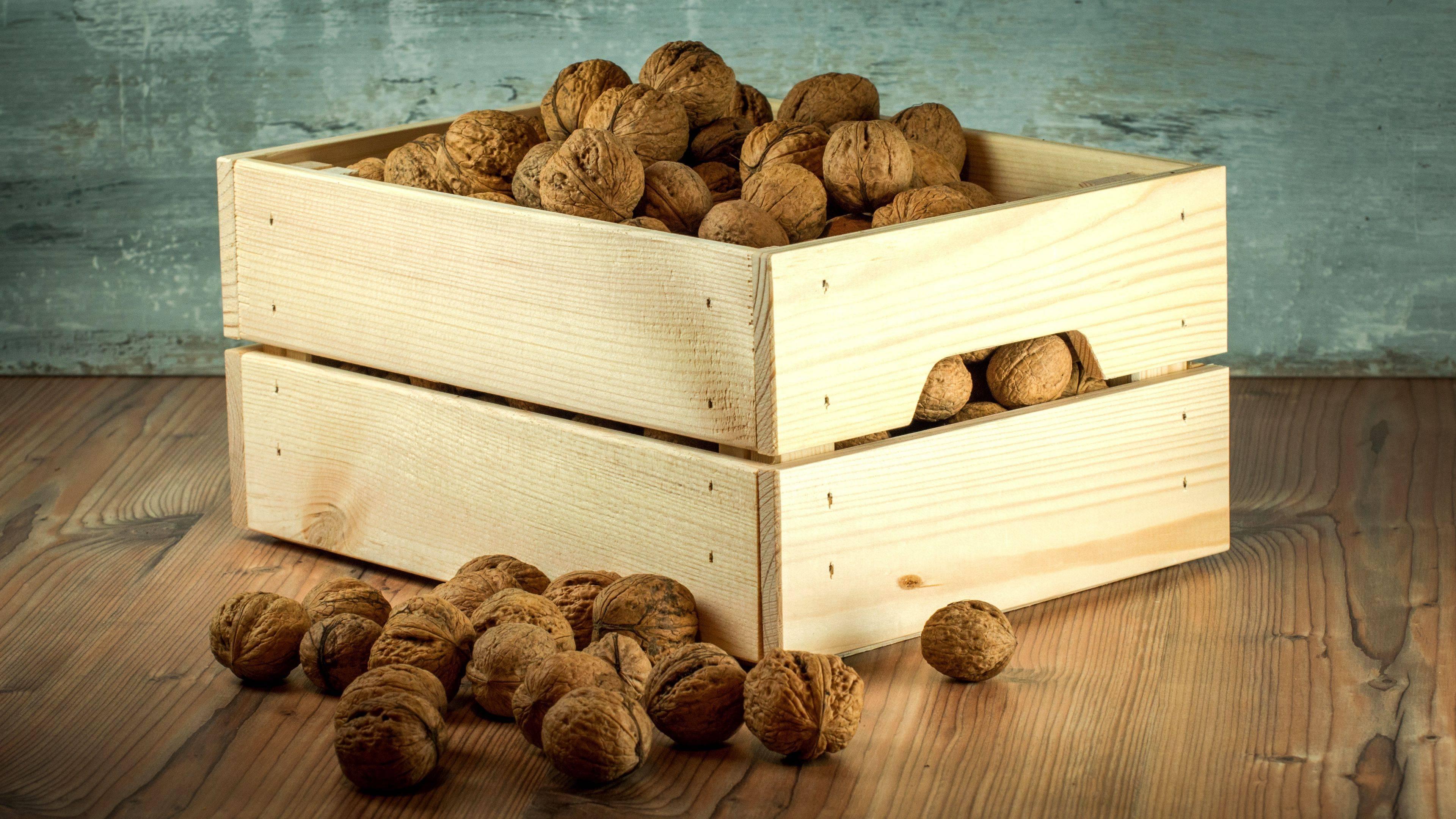Как хранить грецкие орехи – правила и сроки надлежащего хранения + видео