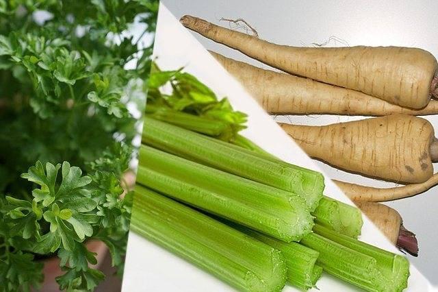 Приправа из сушенных трав и овощей: дневник пользователя yasa962