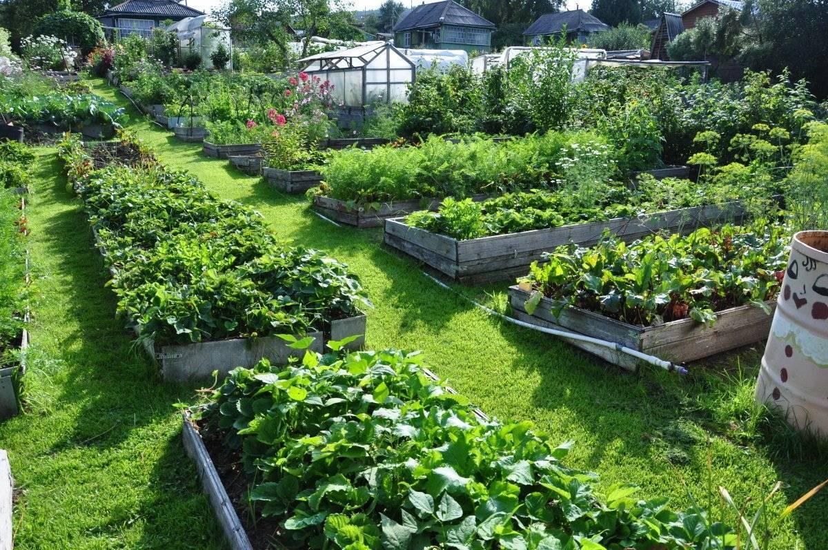 Как купить землю под сад в украине
