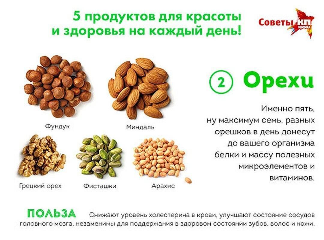 Кедровые орехи и их свойства