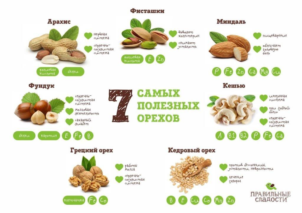 Какие орехи самые полезные для женщин