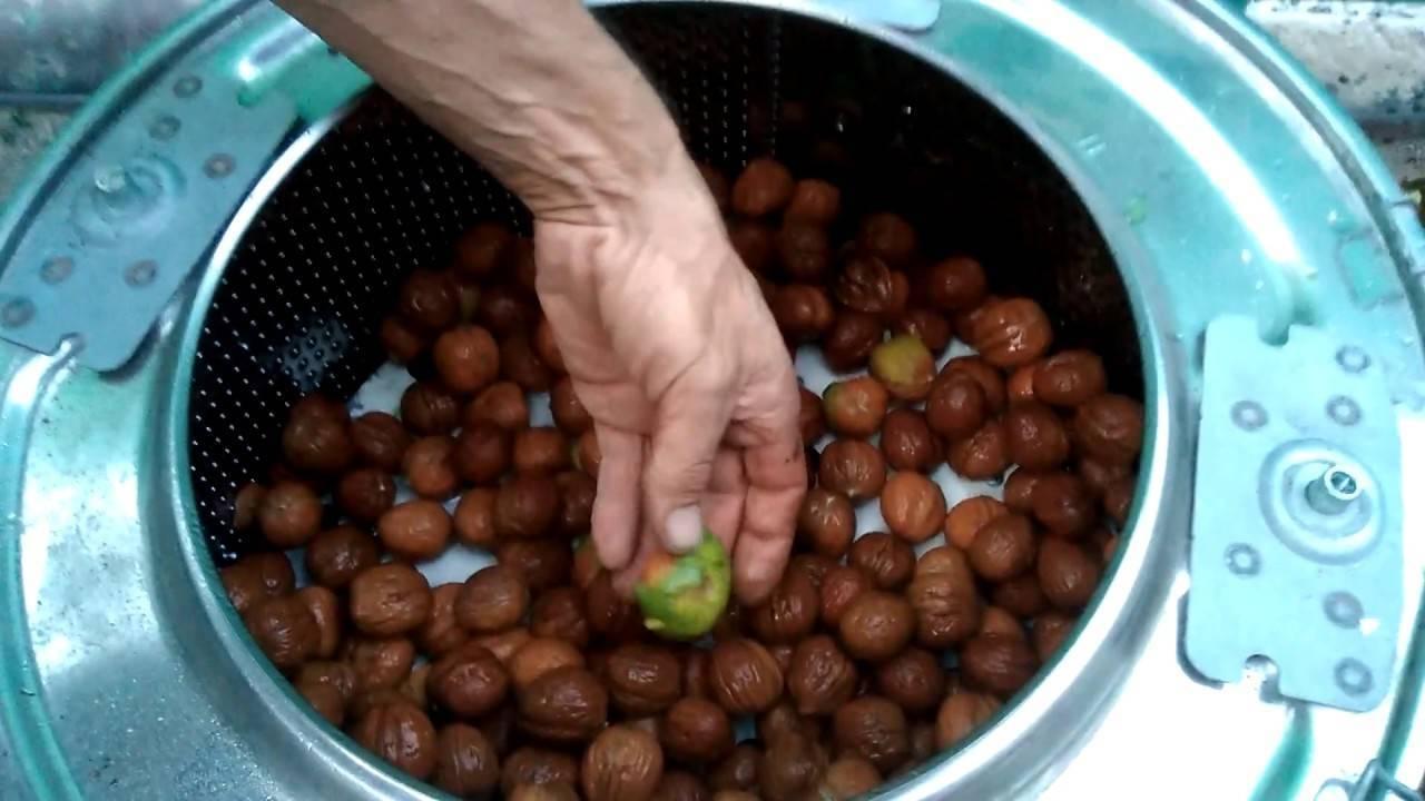 Как очистить арахис от шелухи и кожуры