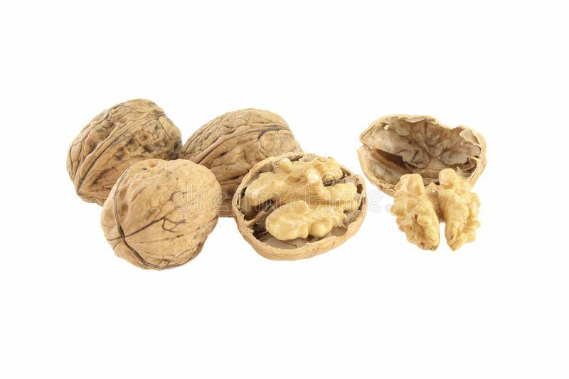 Как чистят грецкие орехи в промышленных масштабах. как перерабатываются грецкие орехи?