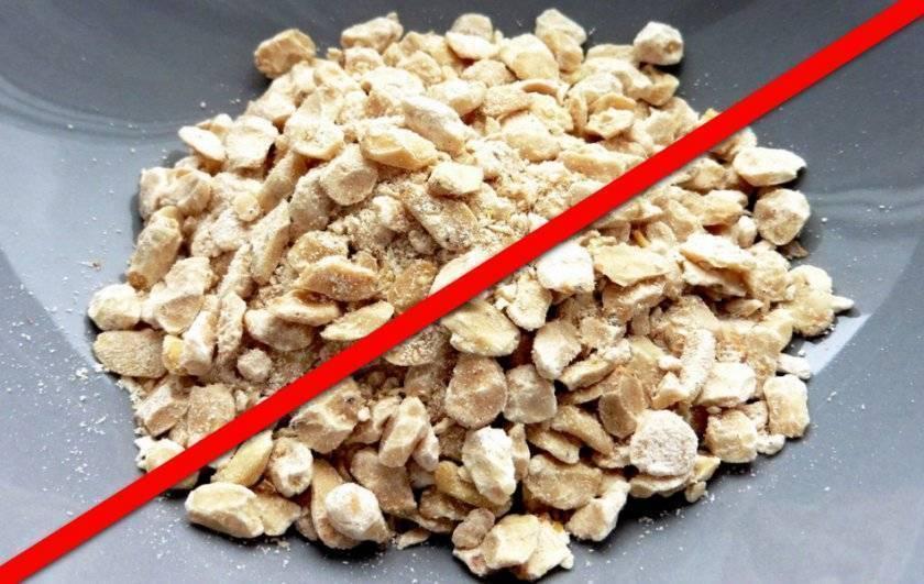 Жмых кедрового ореха: калорийность, польза и вред   food and health