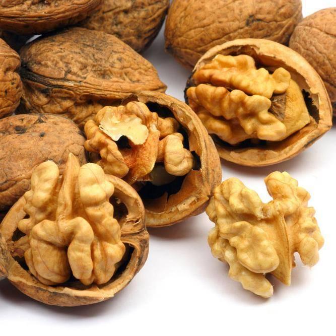 Польза и вред грецких орехов для организма, лечебные свойства, применение
