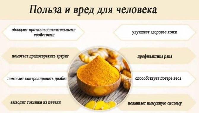 25 видов меда: полезные свойства и противопоказания +отзывы