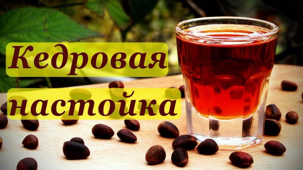 Настойка на кедровых орешках: рецепты, польза и вред алкоголя