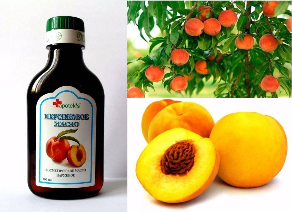 Абрикосовое масло, применение, домашние рецепты