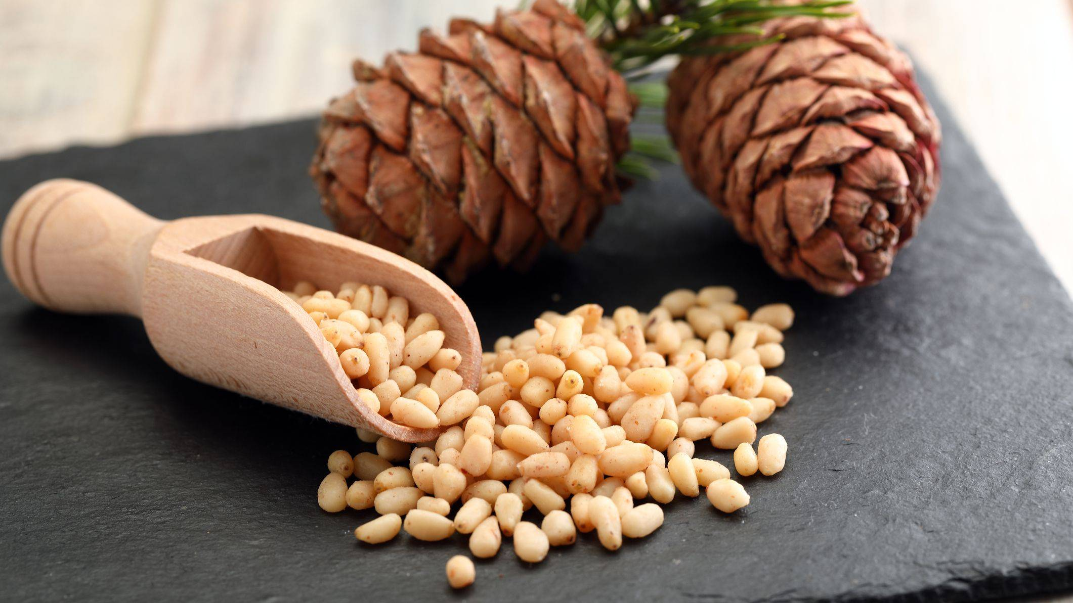 Собирать кедровые шишки и орехи