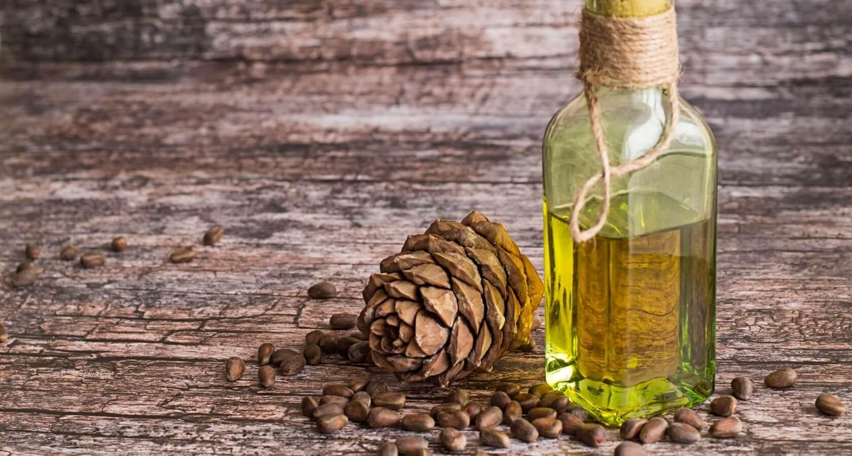 Кедровое масло польза и вред: состав и свойства, рецепты лечения