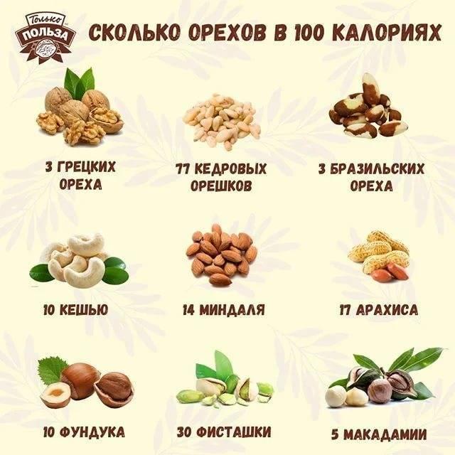Орех пекан сколько можно есть в день: калорийность, химический состав