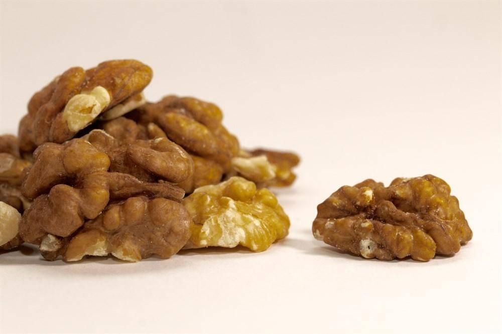 Болезни и вредители грецкого ореха: причины и методы борьбы, как лечить и что делать