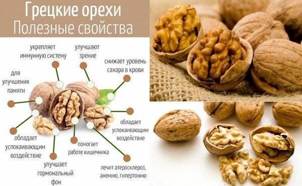 Грецкий орех какие витамины в нем содержатся