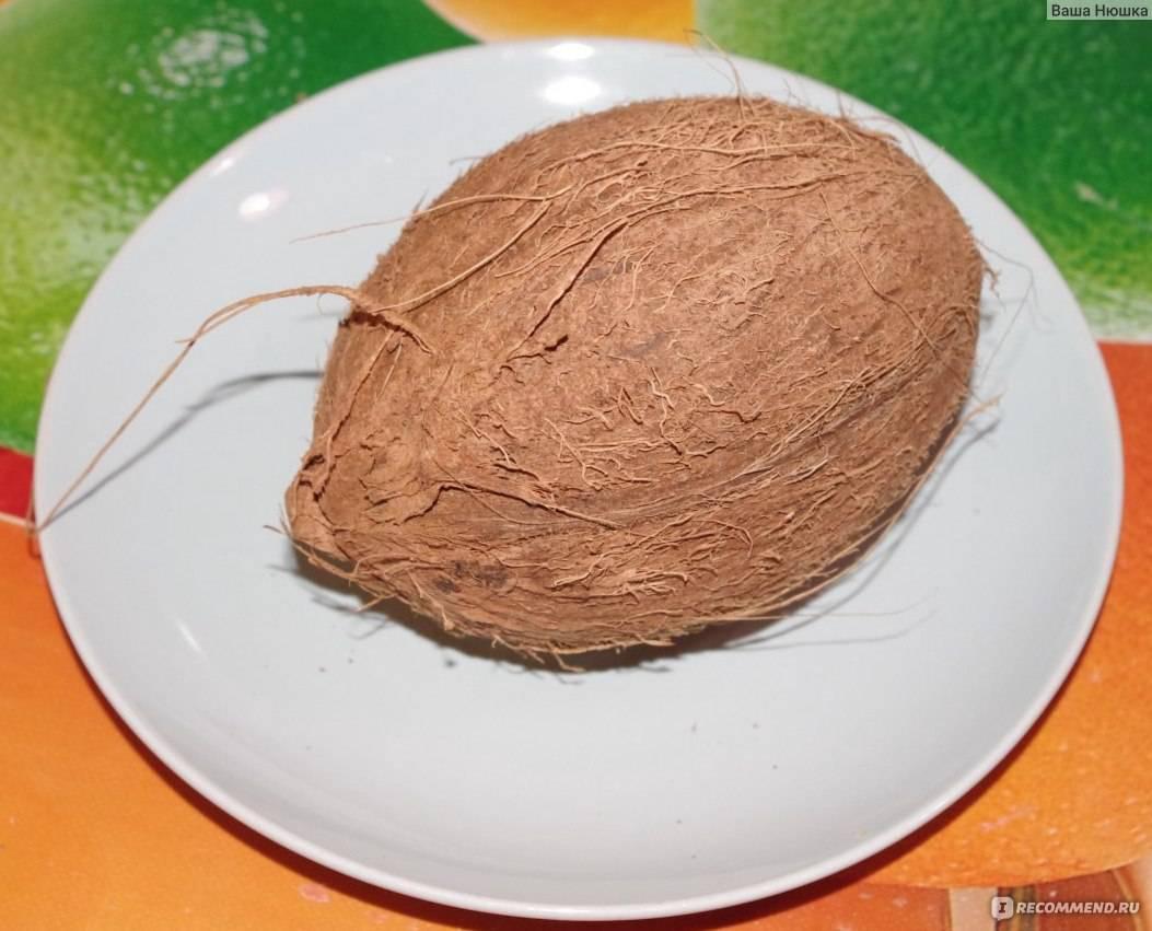 Как сделать кокосовое масло в домашних условиях – советы и видео рецепт