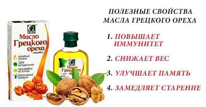 Масло грецкого ореха — польза и вред, как принимать, применение в косметологии и народной медицине