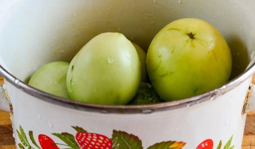 Засолка зеленых помидоров в ведре холодным способом – рецепты