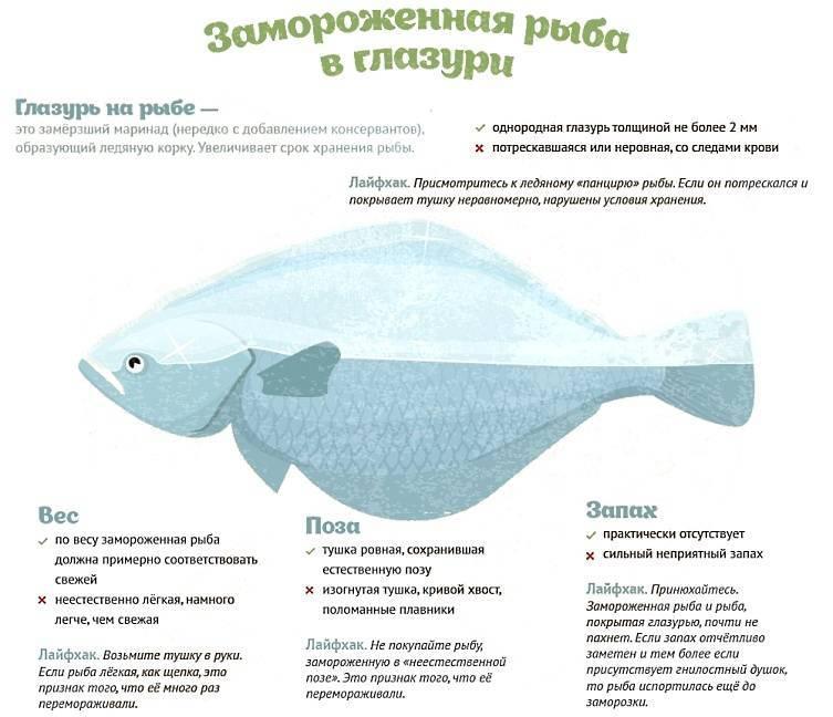 Глава v. размораживание рыбы