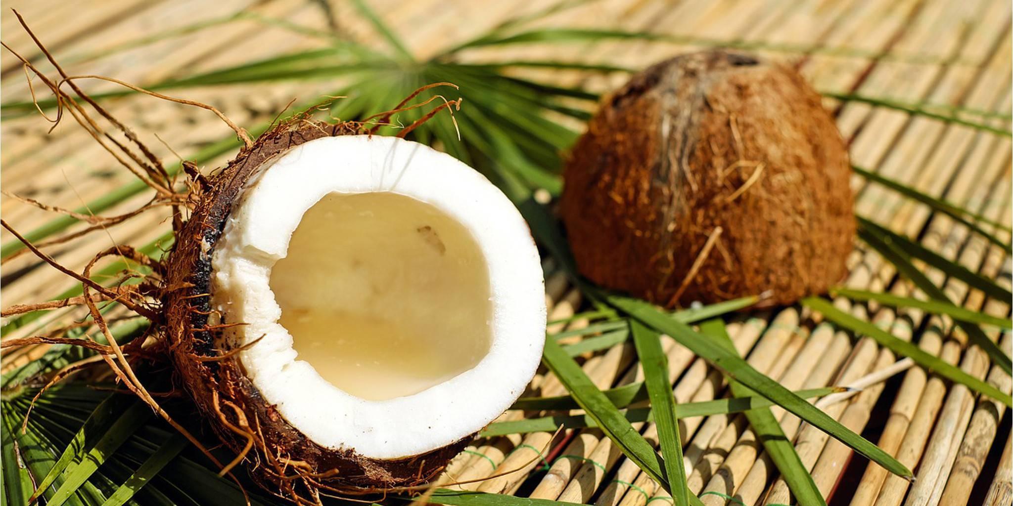 Как хранить кокос, также после вскрытия, чтобы не было плесени внутри, долго ли может не испортиться очищенный плод, его мякоть и стружка, сколько срок сберегания?