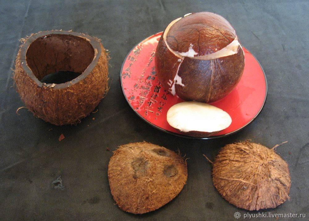 Что можно приготовить из кокоса в домашних условиях: блюда и варианты