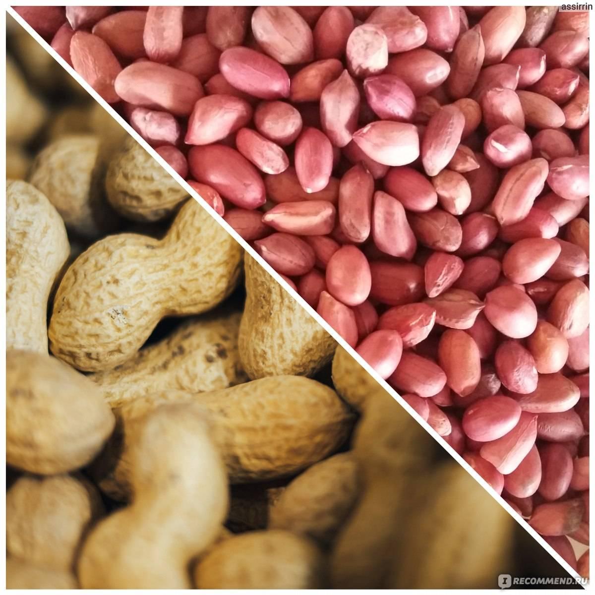Сорта арахиса: раннер, вирджиния, валенсия | огородники