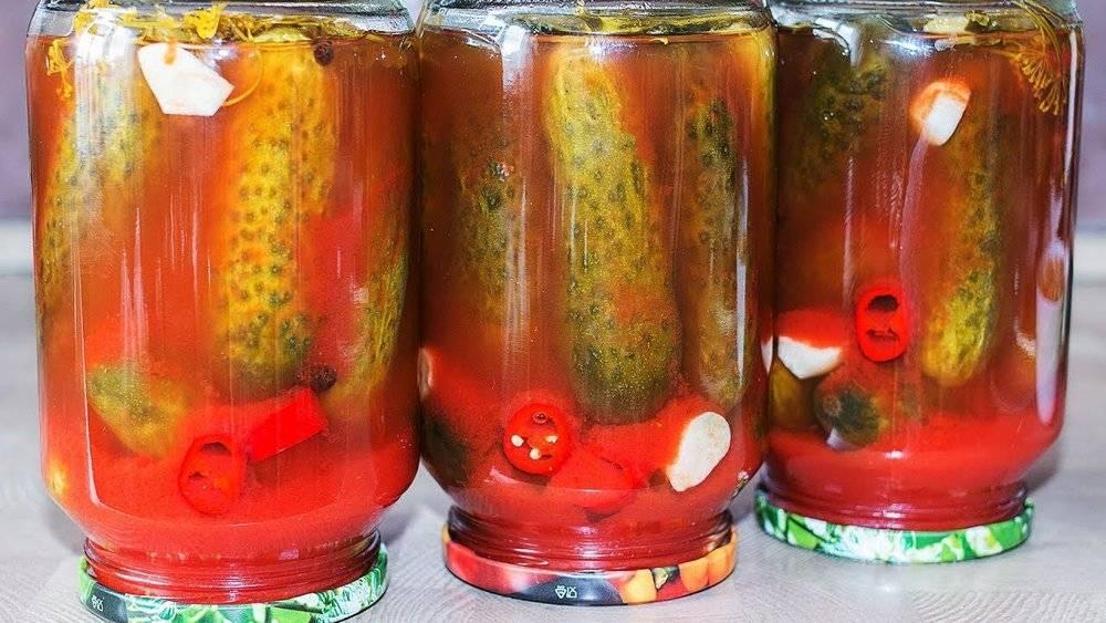Консервация огурцов на зиму: 5 несложных рецептов для приготовления в домашних условиях русский фермер