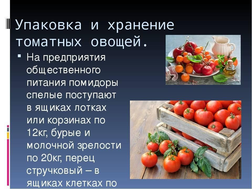 Как хранить овощи и зелень – 5 общих принципов и памятка по 45 видам