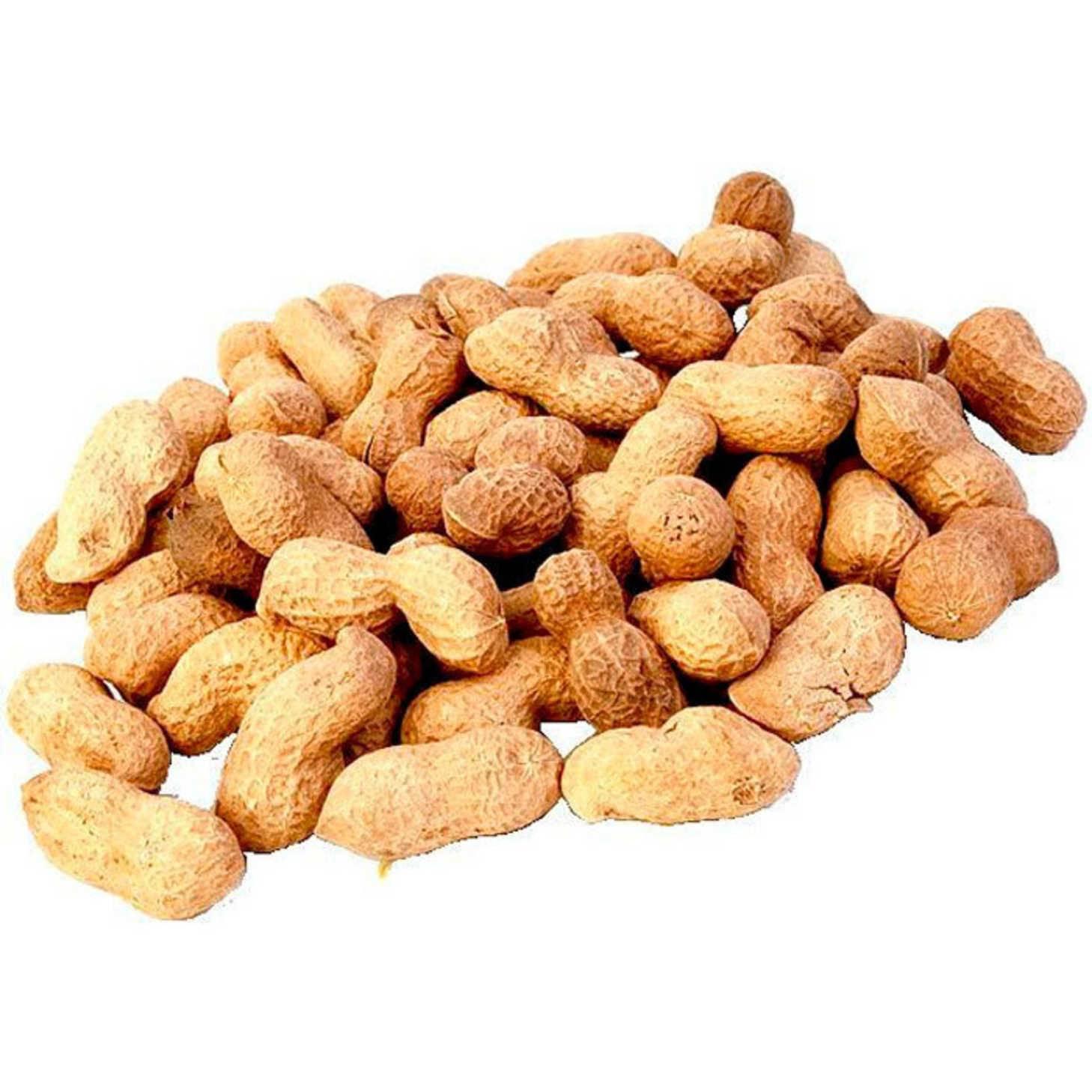 Можно ли греть арахис в микроволновке. как жарить арахис на сковороде, в духовке и микроволновке