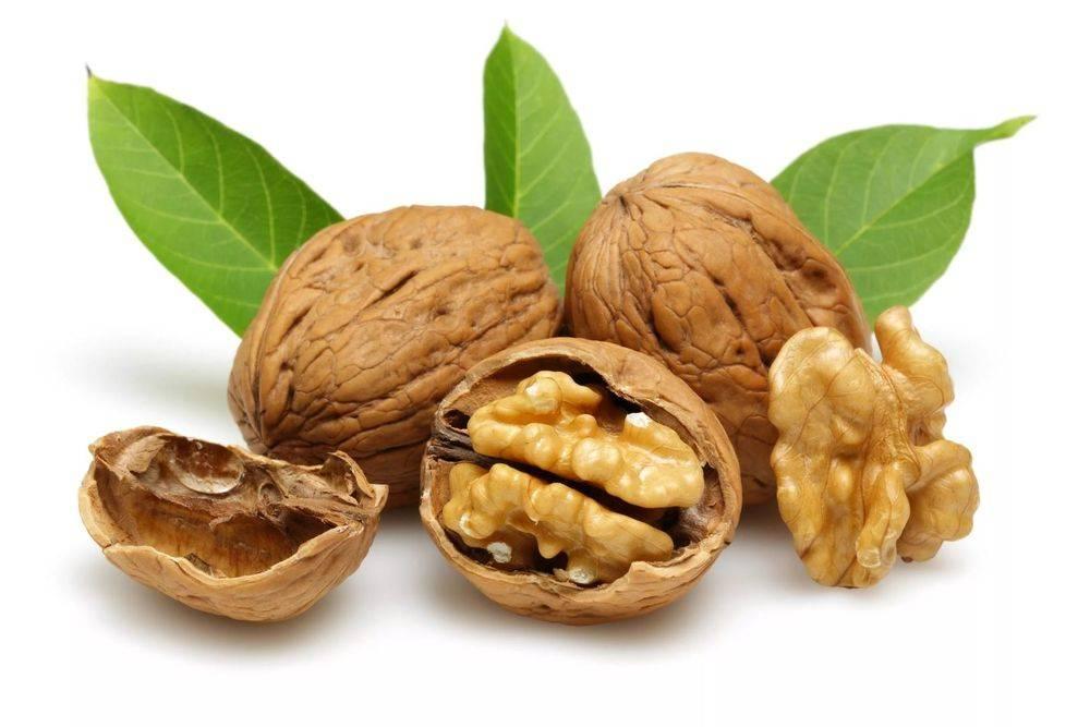 Польза грецкий орех при панкреатите