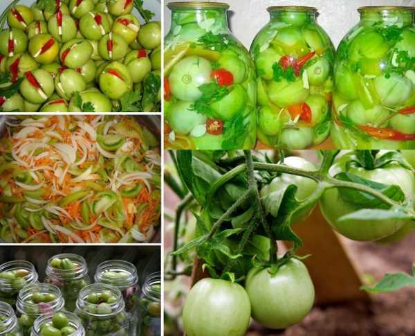 Малосольные помидоры фаршированные: топ-7 рецептов вкусной закуски