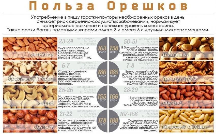 Орехи при запорах: можно ли есть орехи, и как они действуют при запорах