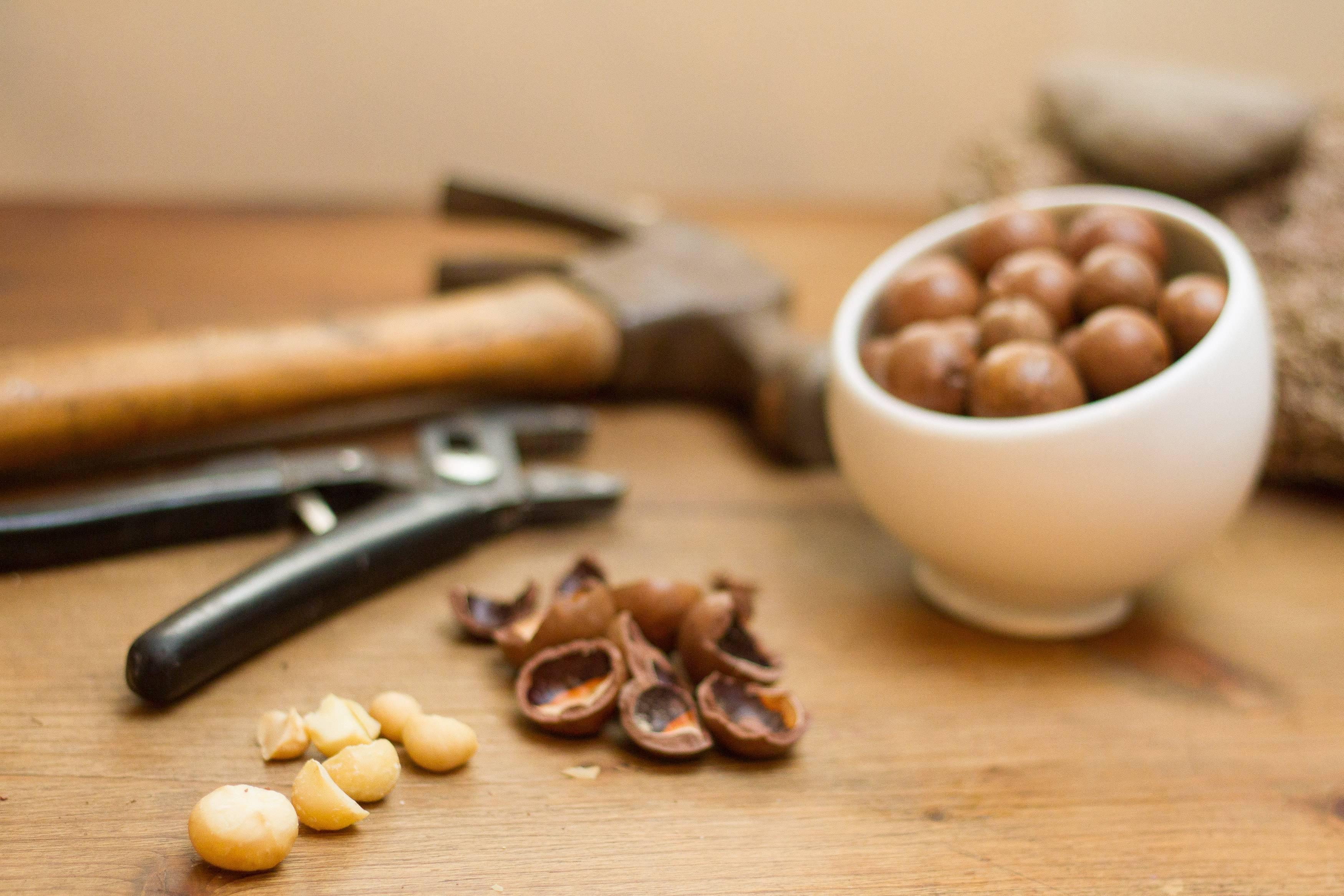 Как расколоть грецкий орех в домашних условиях