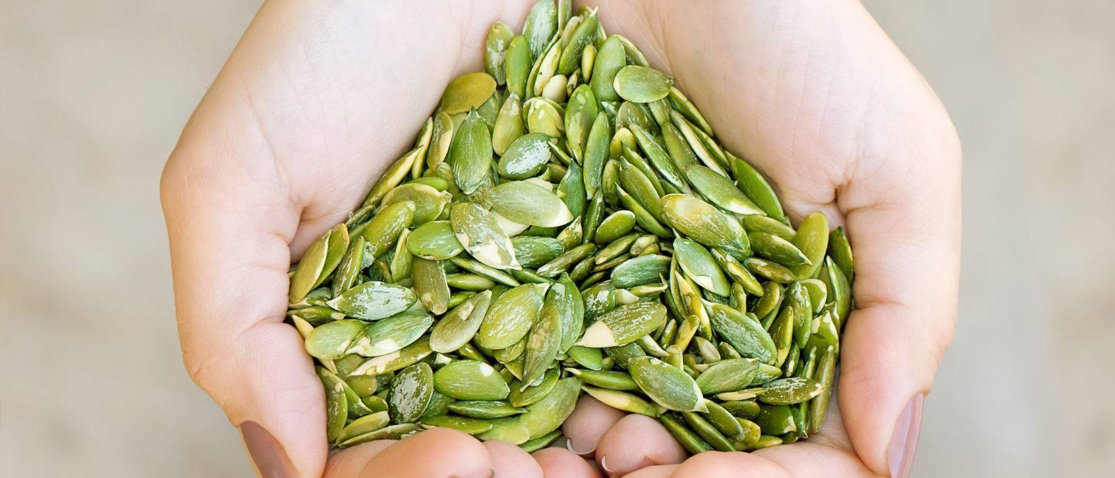 Тыквенные семечки: польза и вред для мужчин и женщин, как сушить и сколько съедать + отзывы