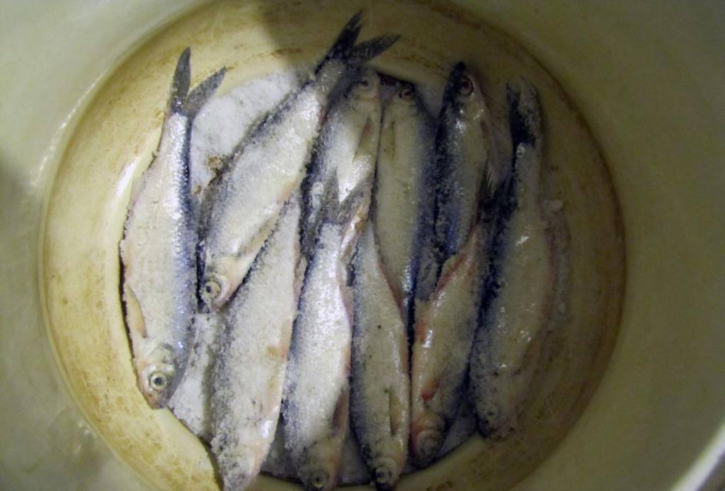 Рассол для рыбы в домашних условиях: проверенная тактика