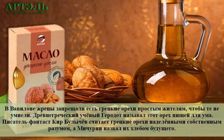 Масло грецкого ореха: польза и вред, лечебные свойства, противопоказания, применение, хранение и как и с чем принимать полезный продукт из ядер во внутрь?
