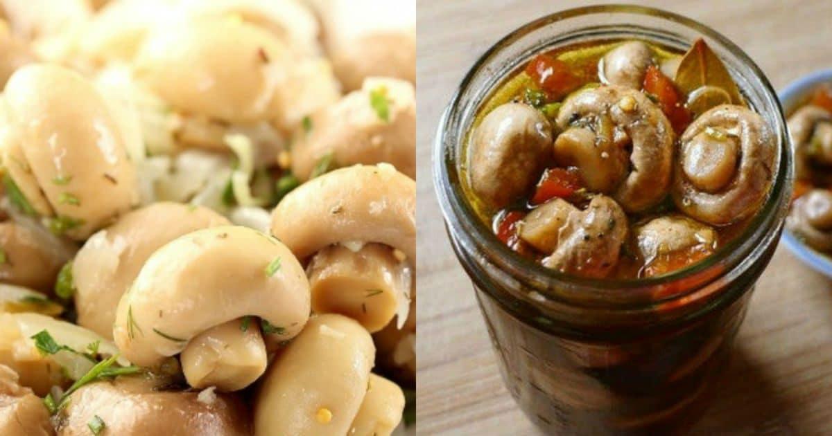 Рассол для грибов маринованных. маринованные шампиньоны в домашних условиях — 7 очень вкусных рецептов быстрого приготовления