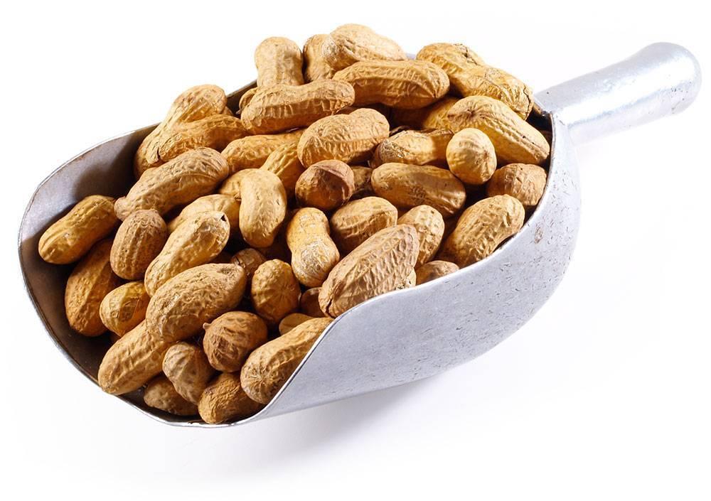 Жареный арахис: калорийность, польза и вред для организма мужчин и женщин