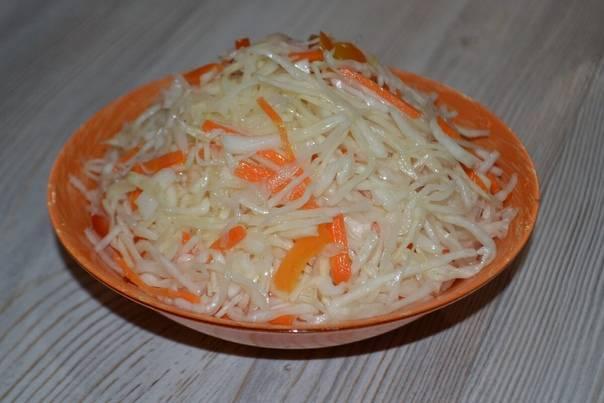 Квашеная капуста быстрого приготовления — 8 рецептов вкусной квашеной капусты