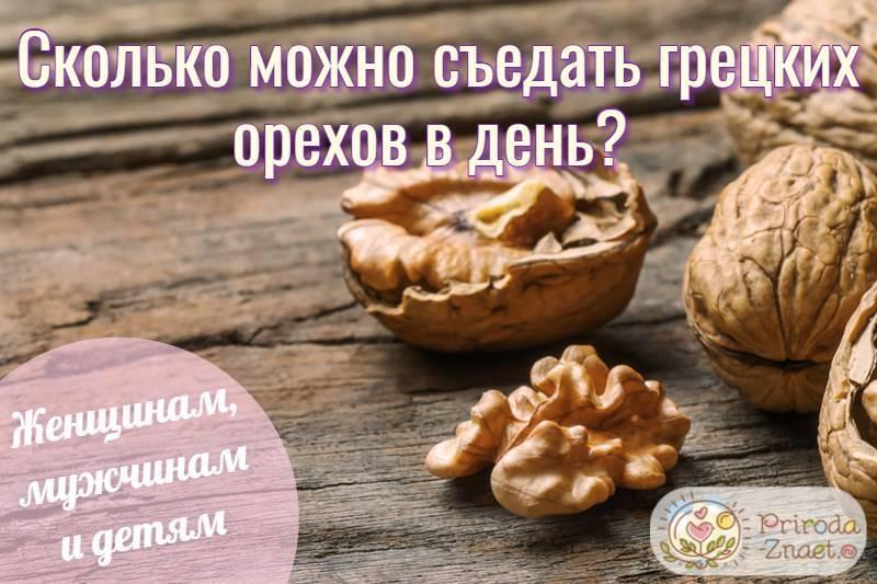Много – не всегда хорошо: сколько можно есть грецких орехов в день?