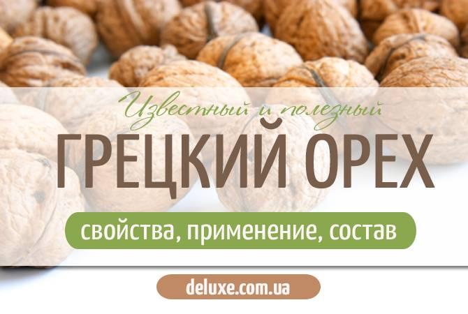 Польза грецкого ореха: состав, свойства, суточные нормы, вред и нюансы применения для организма