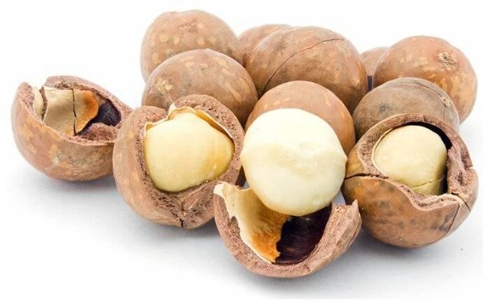 Орех макадамия: польза и вред для организма, калорийность, отзывы врачей