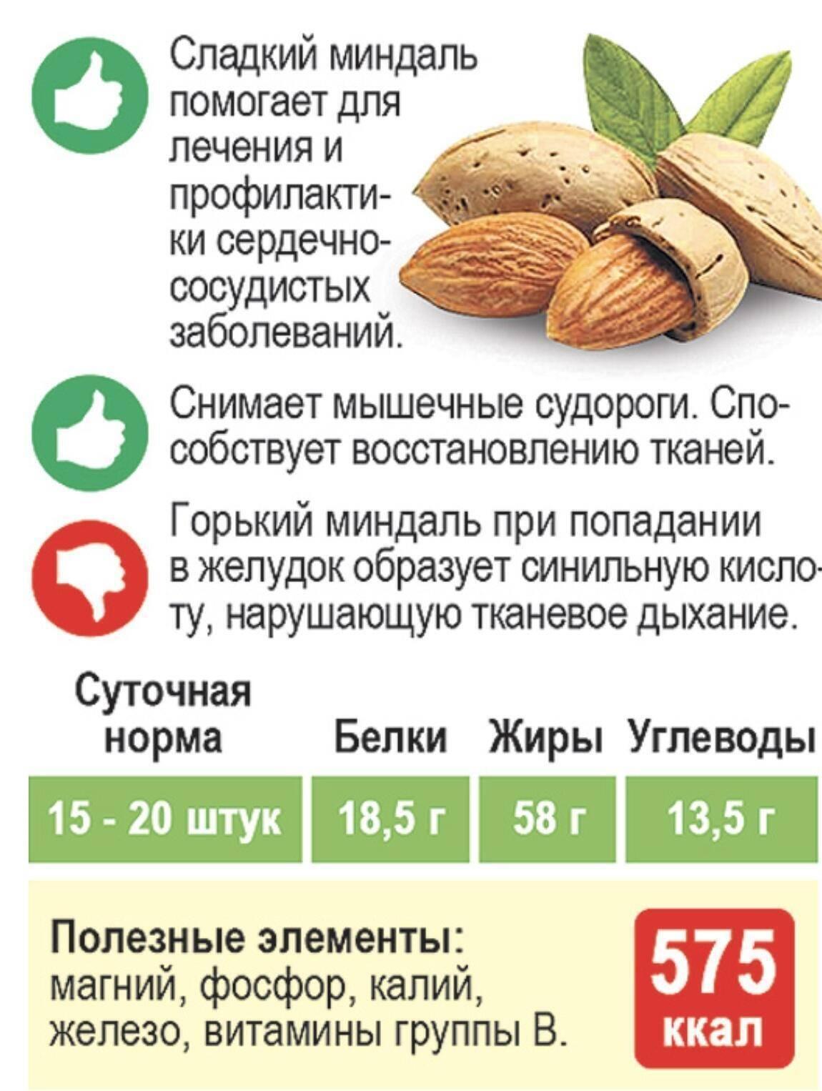 Польза и вред арахиса: свойства для здоровья человека, для организма женщин и мужчин, какой орех лучше - сырой или жареный, сколько нужно съесть