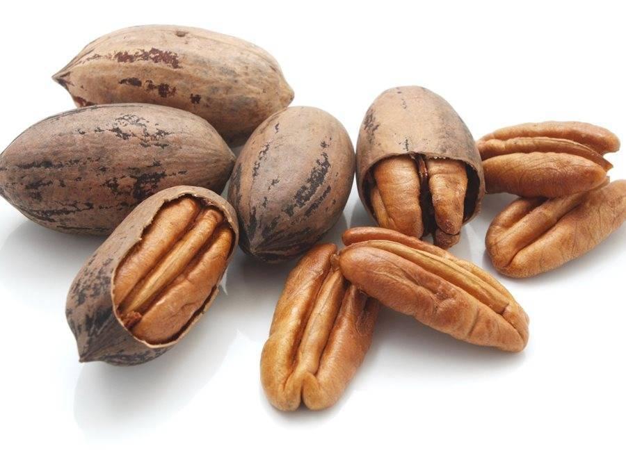 Пекан орех: польза и вред, можно ли есть на диете для похудения?
