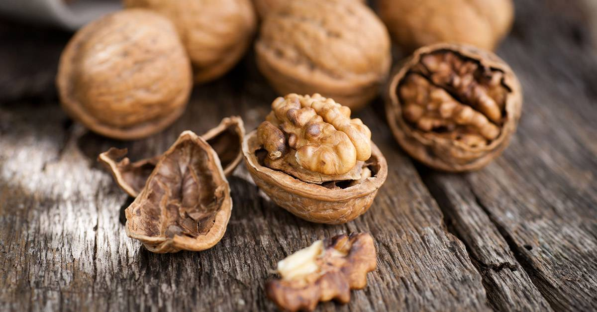 Перегородки и скорлупа грецкого ореха: лечебные свойства, применение. скорлупа грецкого ореха от зубного камня и для удаления волос