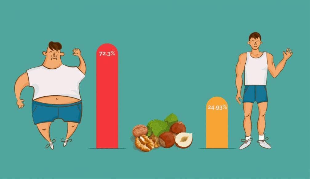 Кешью на диете: можно ли поправиться от орехов, сколько есть плодов при похудении, что приготовить из продукта?