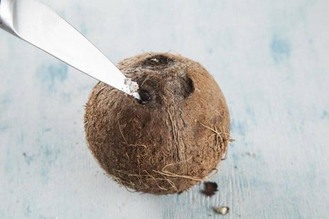 Как правильно и сколько можно хранить кокос в домашних условиях